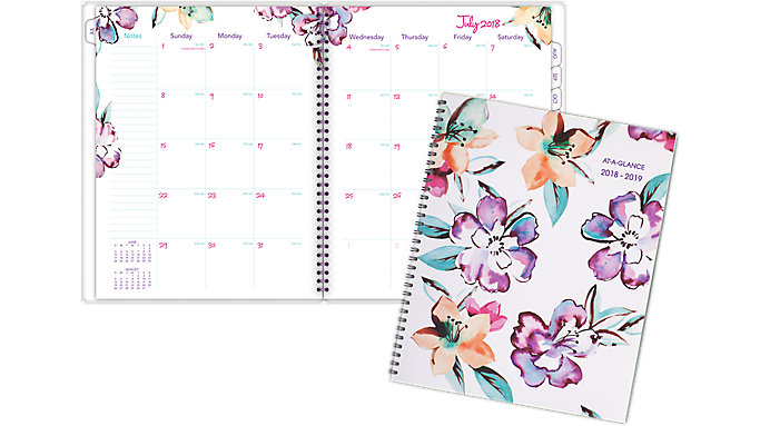 AT-A-GLANCE June Academic Monthly Planner  (1012-900A)