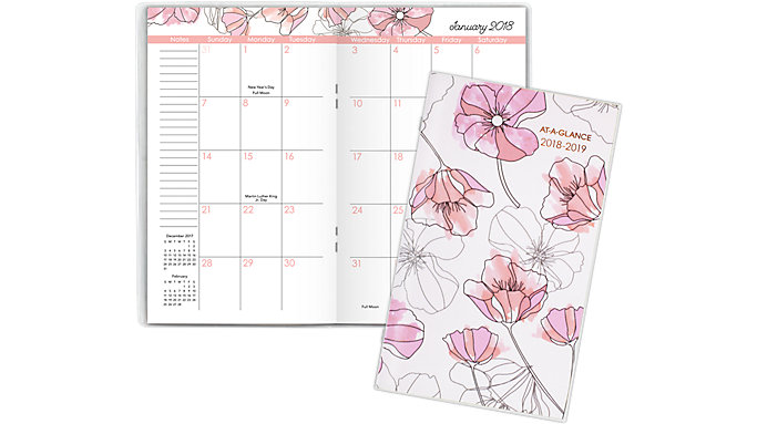 AT-A-GLANCE Blush 2-Year Monthly Pocket Planner  (1041-021)