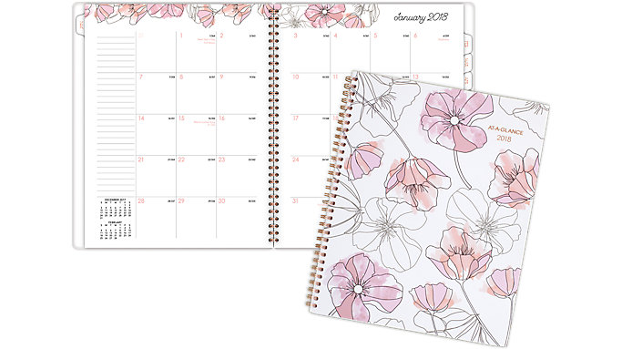 AT-A-GLANCE Blush Monthly Planner  (1041-900)