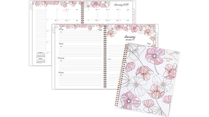 AT-A-GLANCE Blush Weekly-Monthly Planner  (1041-905)