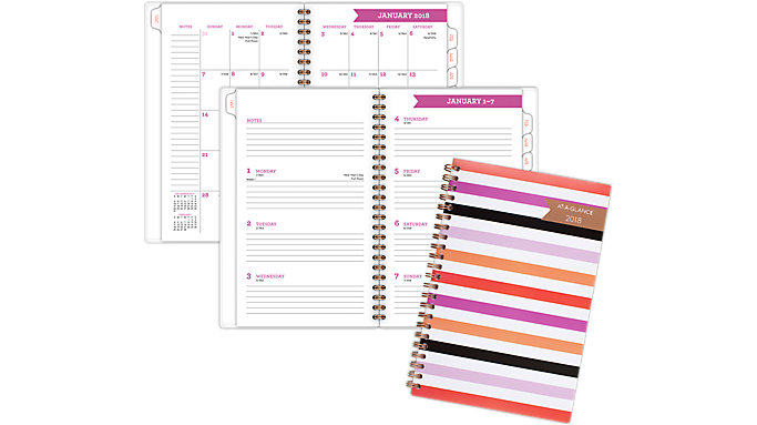 AT-A-GLANCE Parasol Weekly-Monthly Planner  (1064-200)