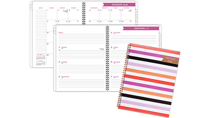 AT-A-GLANCE Parasol Weekly-Monthly Planner  (1064-905)