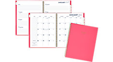 Color Bar Weekly-Monthly Planner (Item # 1078-905)