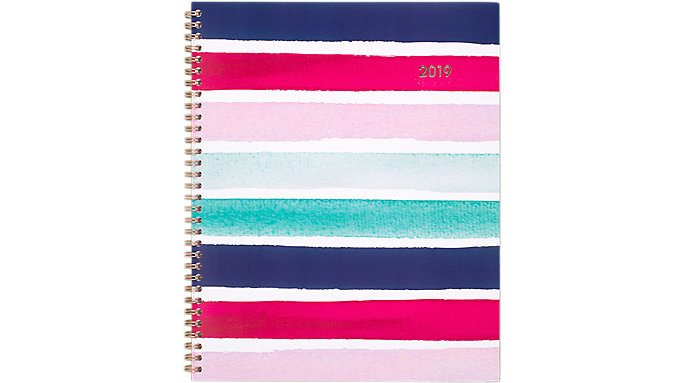 Cambridge Carousel Stripe Weekly-Monthly Planner  (1112S-905)