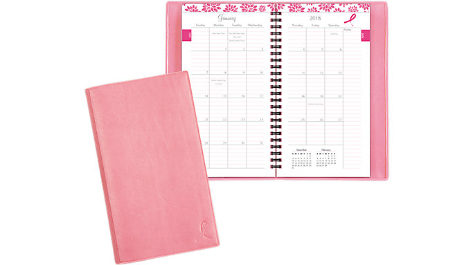 Day-Timer Pink Ribbon Monthly Planner  (11219)