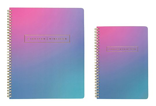 AT-A-GLANCE Ariel Pink and Teal Planner