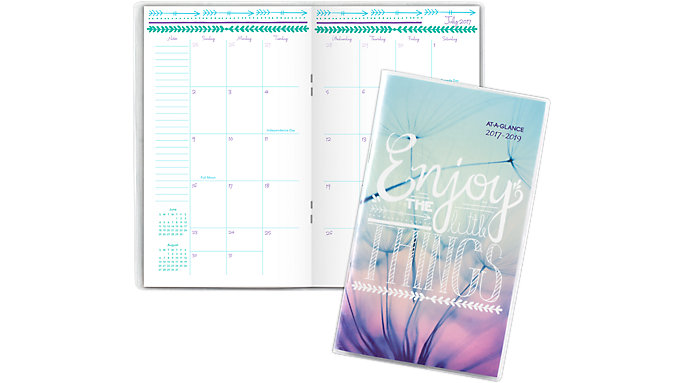AT-A-GLANCE Insta-Note Academic 2-Year Monthly Pocket Planner  (183-021A)