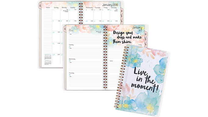 AT-A-GLANCE B-Positive Customizable Weekly-Monthly Planner  (187-201)