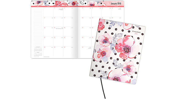 AT-A-GLANCE Kathy Davis Monthly Planner  (4036-900)