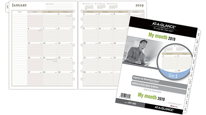 AT-A-GLANCE Day Runner Monthly Planner Refill Size 5  (491-685)