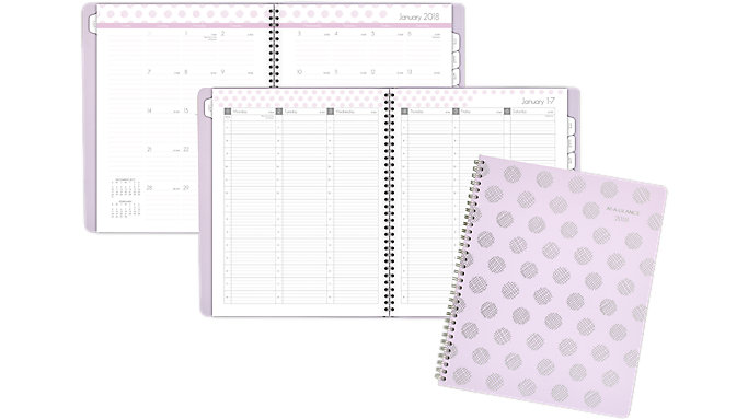 AT-A-GLANCE Dot Weekly-Monthly Appointment Book  (5059-905)