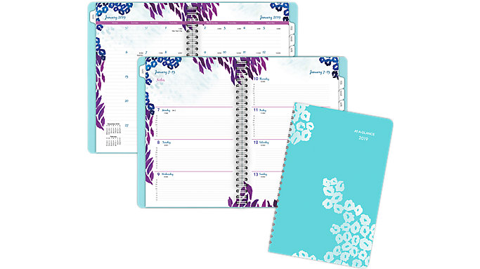 AT-A-GLANCE Wild Washes Premium Weekly-Monthly Appointment Book  (523-200)