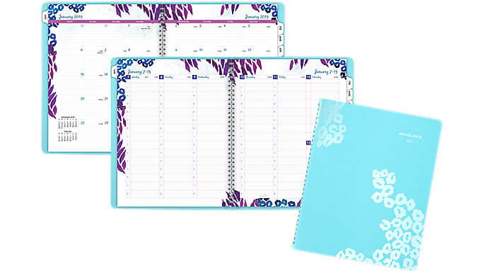 AT-A-GLANCE Wild Washes Premium Weekly-Monthly Appointment Book  (523-905)