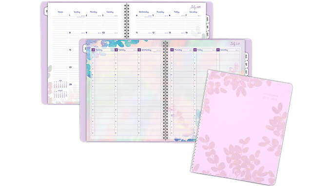 AT-A-GLANCE Aura Blooms Academic Weekly-Monthly Appointment Book  (585-905A)