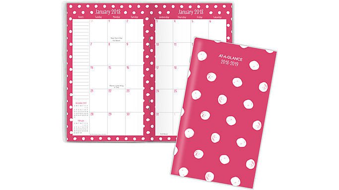 AT-A-GLANCE Kathy Davis 2-Year Monthly Pocket Planner  (6035-021)