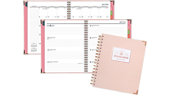 AT-A-GLANCE Badge Academic Weekly-Monthly Planner  (6124S-805A)