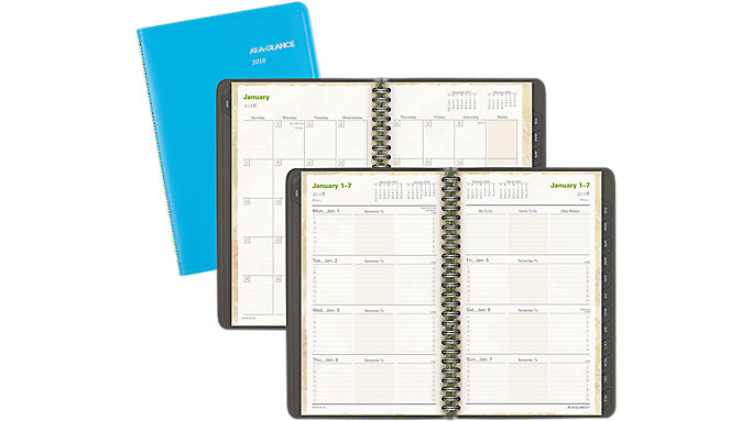 AT-A-GLANCE LifeLinks Weekly-Monthly Appointment Book  (70LL20)