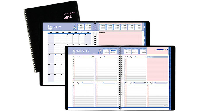 AT-A-GLANCE QuickNotes Breast Cancer Awareness Weekly-Monthly Appointment Book  (76PN01)