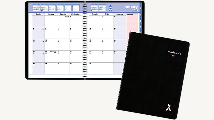 quicknotes breast cancer awareness monthly planner 76pn06 at a