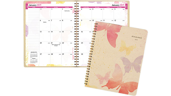 AT-A-GLANCE Watercolors Monthly Planner  (791-800G)
