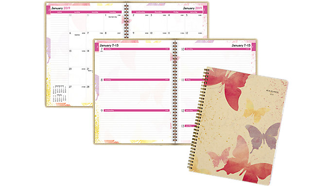 AT-A-GLANCE Watercolors Weekly-Monthly Planner  (791-905G)