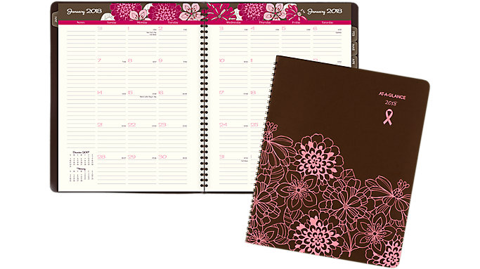 AT-A-GLANCE Sorbet Monthly Planner  (794-900)