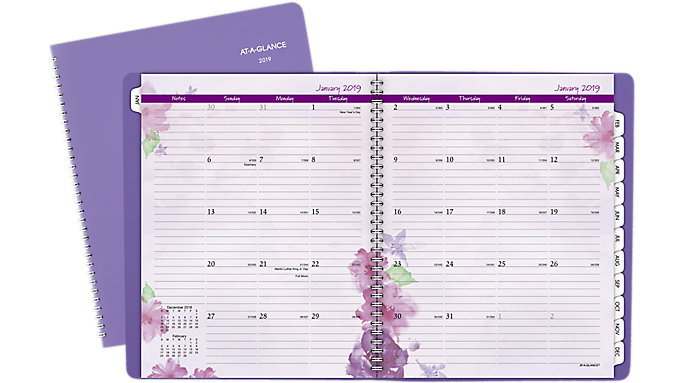 AT-A-GLANCE Beautiful Day Premium Professional Monthly Planner  (938P-900)