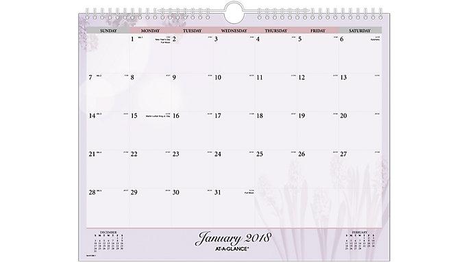 AT-A-GLANCE Nature Wall Calendar  (998-1)