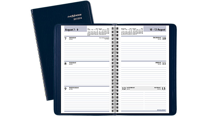 AT-A-GLANCE DayMinder Academic Weekly Planner  (AY41)