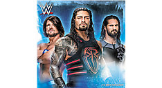 WWE Wall Calendar (Item # DDD474)