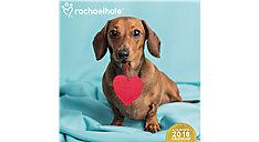 Rachael Hale Dogs Wall Calendar (Item # DDD584)