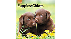 Puppies Bilingual Mini Wall Calendars (Item # DDMF47)