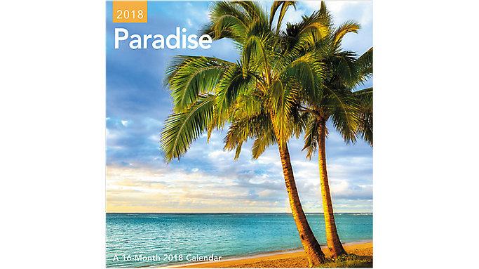 Day Dream Paradise Mini Wall Calendar  (DDMN45)