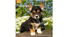Puppies Mini Wall Calendar (Item # DDMN47)