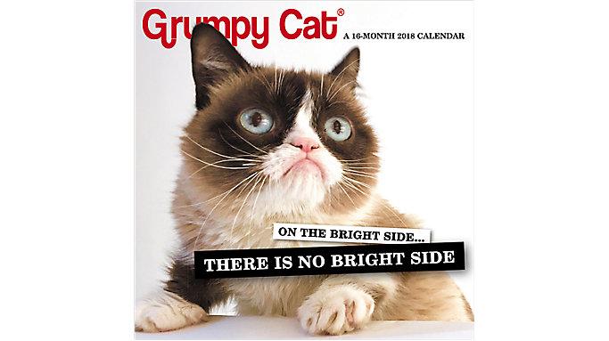 Day Dream Grumpy Cat Mini Wall Calendar  (DDMN68)