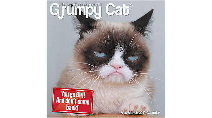Day Dream Grumpy Cat Mini Wall Calendar  (DDMN68)