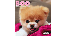 BOO The Worlds Cutest Dog Mini Wall Calendar (Item # DDMN71)