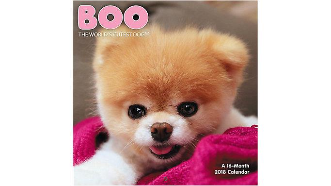 Day Dream BOO The Worlds Cutest Dog Mini Wall Calendar  (DDMN71)