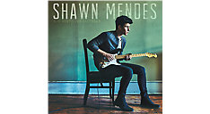 Shawn Mendes Mini Calendar (Item # DDMN88)