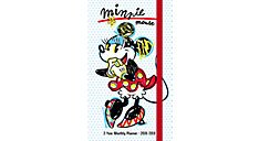 Minnie Mouse 2-Year Monthly Pocket Planner (Item # DDPP21)