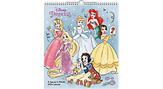 Disney Princess 13x15 Special Edition Monthly Wall Calendar (Item # DDSE94)