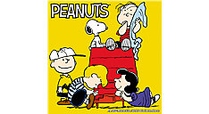 Peanuts Wall Calendar (Item # DDW048)