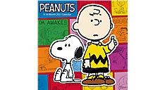 Peanuts 12x12 Monthly Wall Calendar (Item # DDW048)