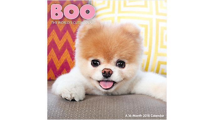Day Dream BOO The Worlds Cutest Dog Wall Calendar  (DDW062)