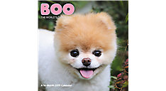 BOO The Worlds Cutest Dog Wall Calendar (Item # DDW062)