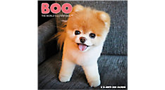 BOO The World's Cutest Dog 12x12 Monthly Wall Calendar (Item # DDW062)