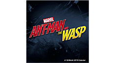 MARVEL Avengers Ant-Man and The Wasp (Item # DDW219)