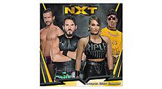 NXT 12x12 Monthly Wall Calendar (Item # DDW220)
