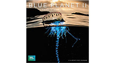 The Blue Planet 12x12 Monthly Wall Calendar (Item # DDW238)
