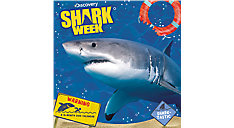Shark Week Wall Calendar (Item # DDW240)